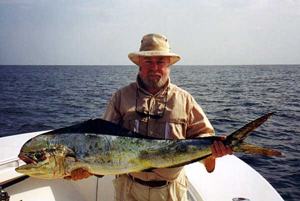 Where do you get your seafood and what do you order when for Dolphin fishing florida
